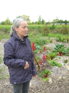 Micheline, l'une des bénévoles qui a répondu oui à l'appel! Elle a généreusement donné des semences variées qu'elle-même utilise dans son jardin de permaculture à St-Timothée.