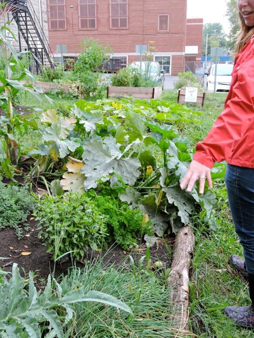 Un lot privé entretenu par une résidente à proximité. Des perches de cèdres limite l'envahissement de la pelouse dans la surface cultivable.