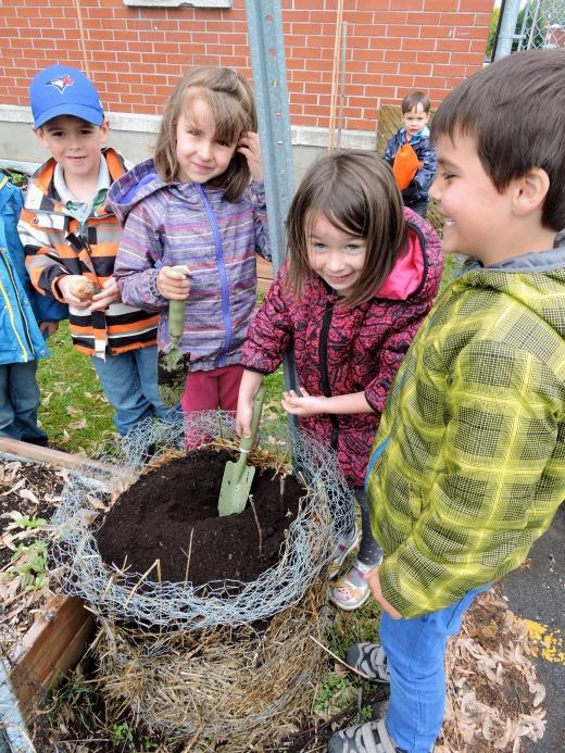Les enfants plantent des pomme de terre dans une tour (grillage, paille et terreau). Photo par Jasmine Kabuya Racine.
