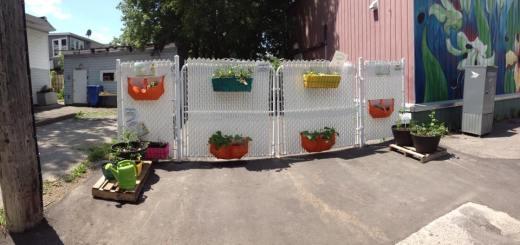 L'espace potager libre-service du Centre Main d'Femme. On y cultive bettes à carde, ciboulette, fraises, tomates, basilic, tournesol et bien d'autres. Photo par Guylaine Joanette.