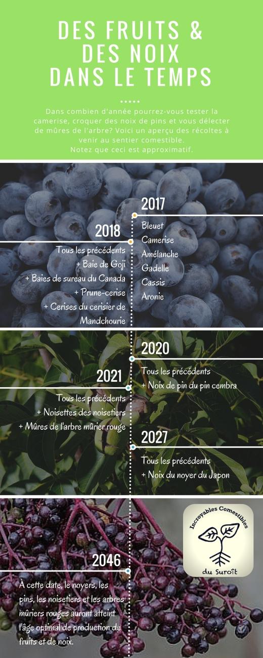 des petits fruits et des noix dans le temps