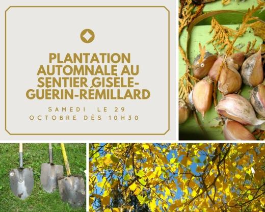 la-derniere-plantation