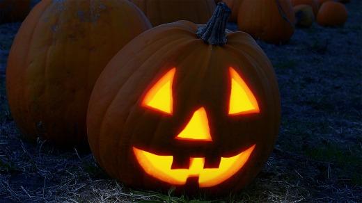 pumpkin-2853742_1920